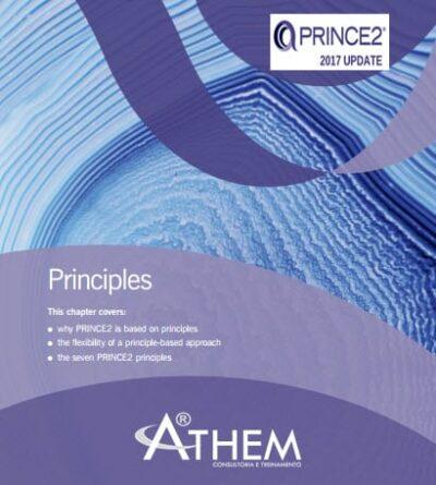 PRINCE2 Princípios Fundamentais de Gerenciamento de Projetos